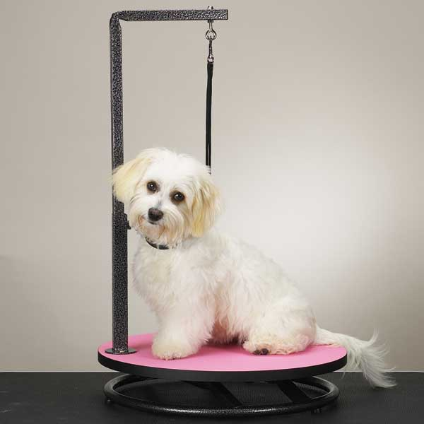 Master Equipment Grooming Table With Arm Save space and increase your productivity with our Small Pet Grooming ...