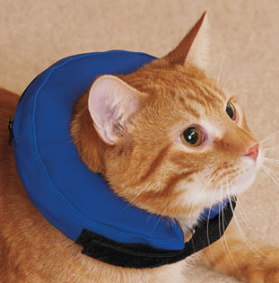 Inflatable Pet Collar For Cats