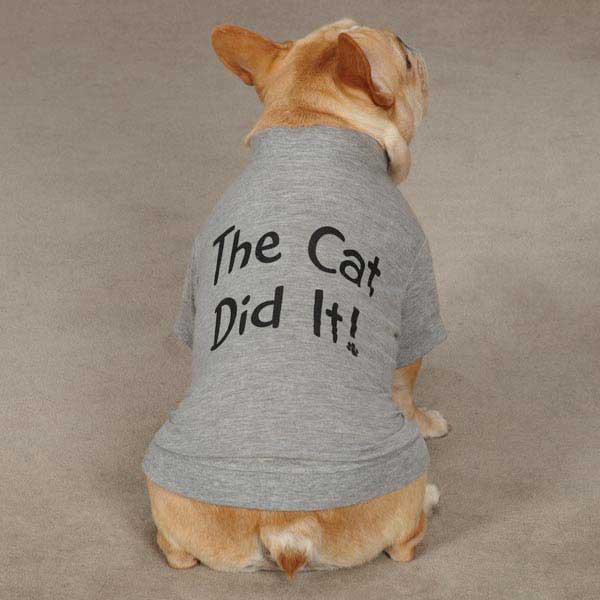 Hundkläder Attityd