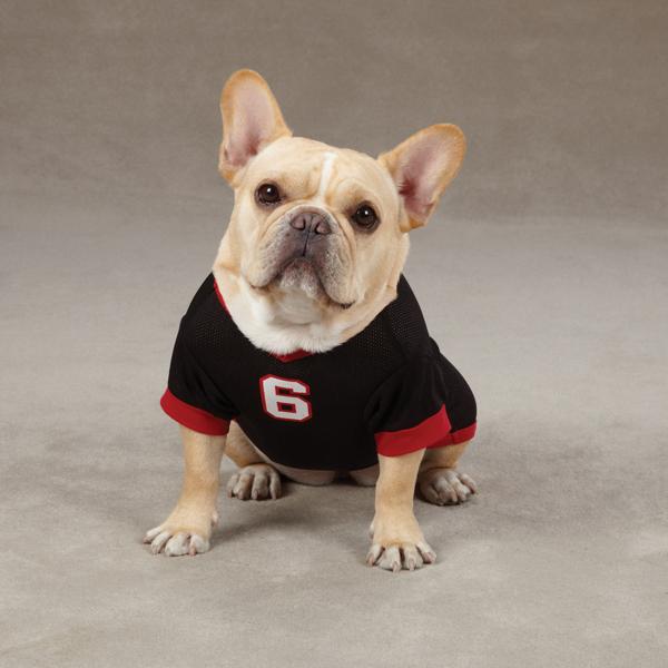 Hundkläder - Sport