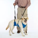 Lyft & Hjälpsele 4 i 1 Lyftsele för Djur